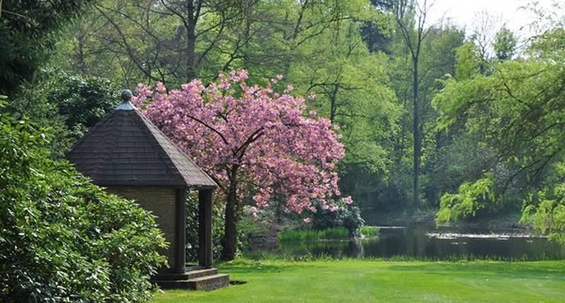 Landgoed Huize Bergen – tuin